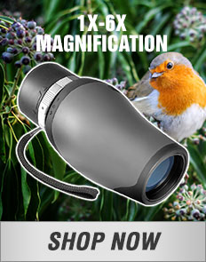 1x - 6x Magnification